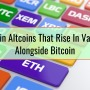 Main Altcoins That Rise In Value Alongside Bitcoin