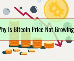 Why Is Bitcoin Price Not Growing