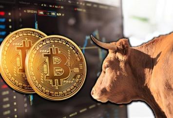 bitcoin bull run